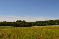 8.6 acres of Cleared Land With Excellent Topography just off hwy 101