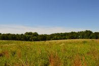 3 Acre Commercial Sites Just Off Reidville Road Near Hwy 101