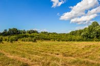 3 Acre Home Site in District 5 at Gano Dr, Reidville, SC, USA for 106000