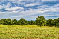 27 Acres With Panoramic Mountain Views at Mountain View Ln, South Carolina 29349, USA for 25000