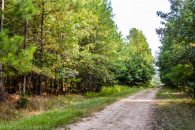 21 Acre Recreational Tract Near Enoree