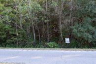 Wooded Homesite in Jonesville, SC at Jonesville Lockhart Hwy, South Carolina, USA for 10900