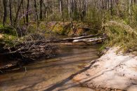 18+/- Acres on 2-Mile Creek near Woodruff
