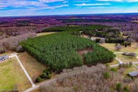18 Wooded Acres in Walnut Grove Community