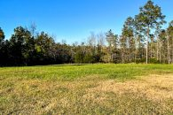 34 Acre Recreational Property with Homesite in Laurens County