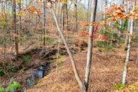 19 Acres Near Goucher Community of Cherokee County