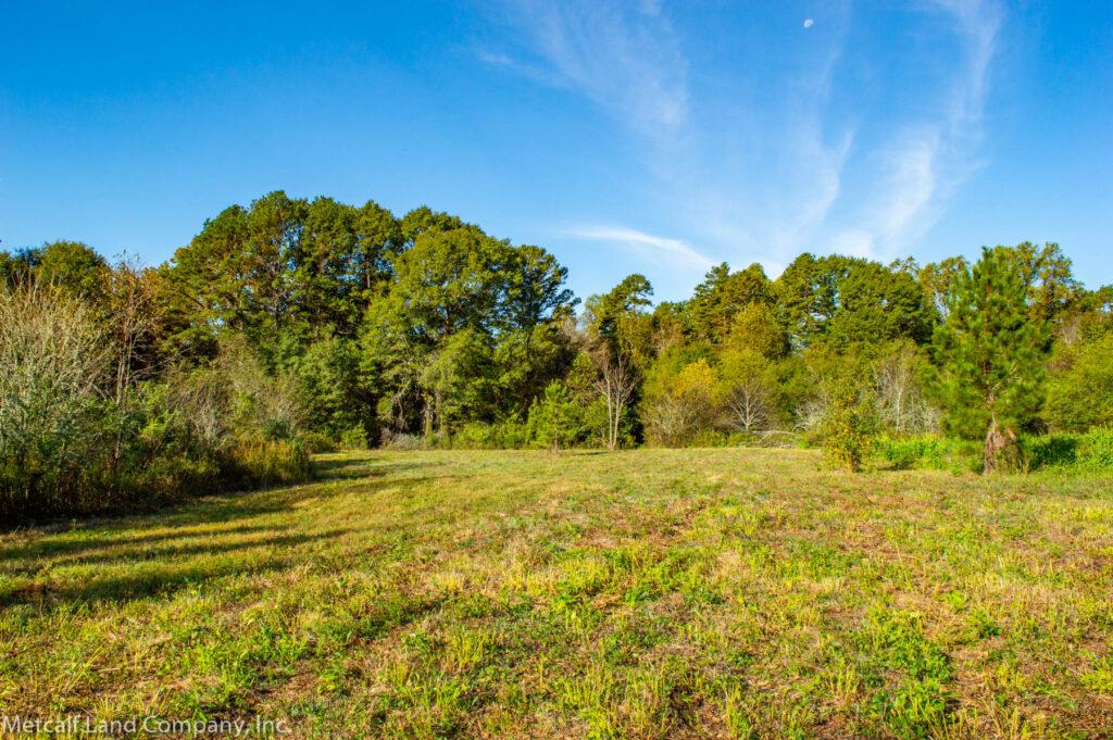 Plot of Land in South Carolina