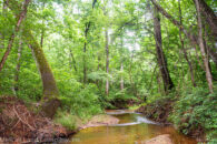 30 Acre Wooded Tract in Northern Spartanburg County