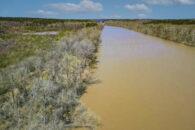 192 Acres Bordering Sumter National Forest & Broad River