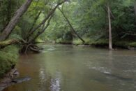 35 Acre Estate Homesite On The East Side Of Spartanburg