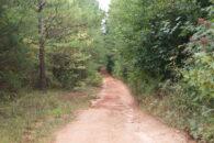 30 Acres In The Upper Part Of Laurens County