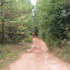 30 Acres In The Upper Part Of Laurens County at 19 Thimble Dr, Gray Court, SC 29645, USA for 157500