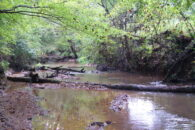 26 Acre Wooded Homesite In Woodruff On Dead End Road