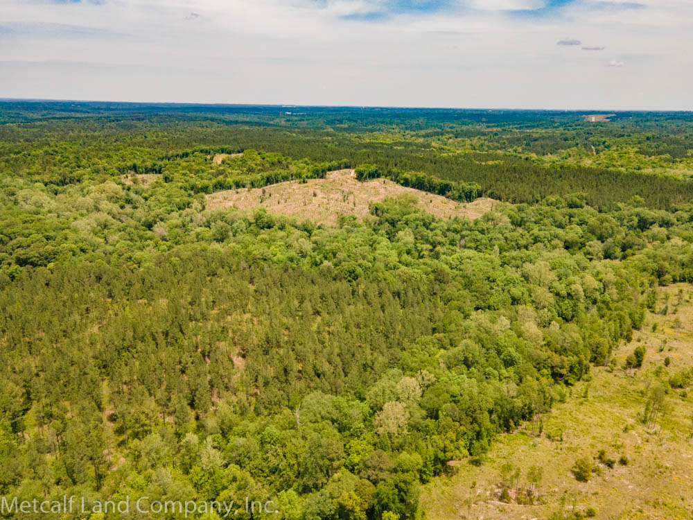 Timberland Land in South Carolina